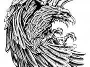 птицы (73)