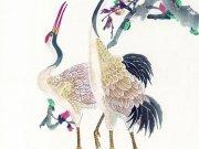 Фотопечать на потолке: Птицы 19