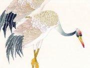 Фотопечать на потолке: Птицы 34