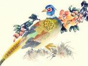Фотопечать на потолке: Птицы 38