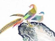 Фотопечать на потолке: Птицы 39