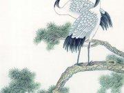 Фотопечать на потолке: Птицы 8