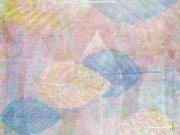 Фотопечать на потолке: Текстуры 2