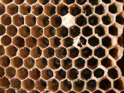Фотопечать на потолке: Текстуры 79