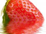 Strawberries - fresas