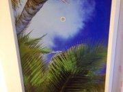Арт-потолок на матовой фактуре с закарнизной нишей