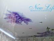 Арт-печать на лаковой фактуре потолка