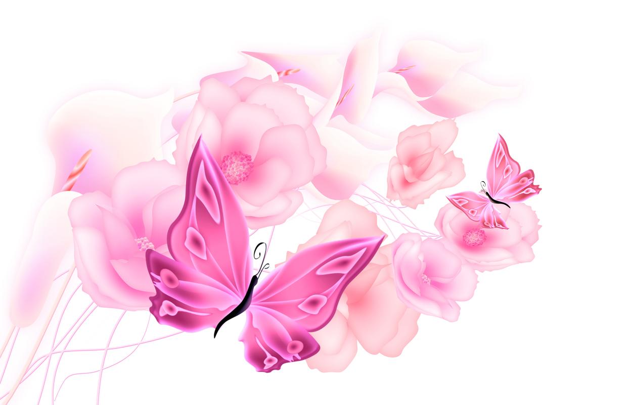 Фотопечать картинки бабочек