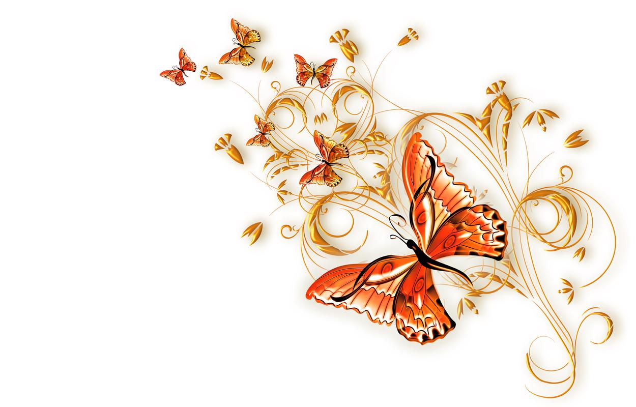 Анимацией марта, векторные картинки цветы и бабочки
