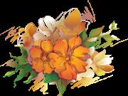 цветы (181)