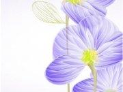 цветы (212)