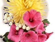 Фотопечать на потолке: Цветы 116