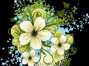 Фотопечать на потолке: Цветы 119