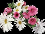 Фотопечать на потолке: Цветы 126