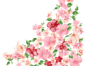 Фотопечать на потолке: Цветы 130