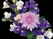 Фотопечать на потолке: Цветы 147
