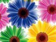 Фотопечать на потолке: Цветы 24
