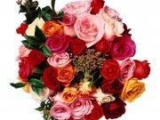 Фотопечать на потолке: Цветы 25