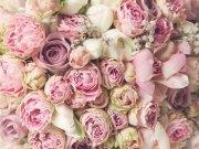 цветы и цветочные композиции (35)