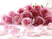 Фотообои на стену: Цветы 13