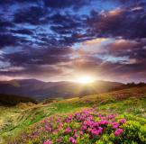 Фотообои Природа