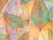 Фотообои на стену: Текстура 7