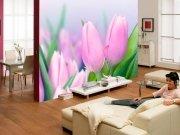 Фотообои с тюльпанами в интерьере гостиной  из каталога  Цветы