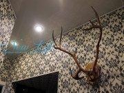 Цветной лаковый натяжной потолок со встроенными светильниками в прихожей