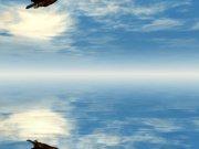 Небо (42)