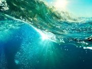 Фотопечать на потолке: Подводный мир (109)