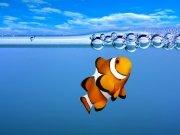 Фотопечать на потолке: Подводный мир (137)