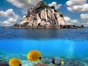 Фотопечать на потолке: Подводный мир 43