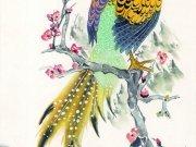 Фотопечать на потолке: Птицы 14