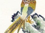 Фотопечать на потолке: Птицы 15
