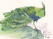 Фотопечать на потолке: Птицы 20
