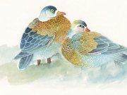 Фотопечать на потолке: Птицы 21