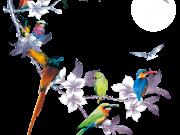 Фотопечать на потолке: Птицы 31