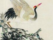 Фотопечать на потолке: Птицы 43