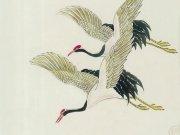 Фотопечать на потолке: Птицы 44