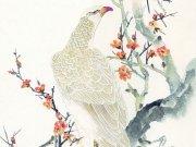 Фотопечать на потолке: Птицы 7