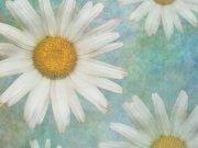 Фотопечать на потолке: Текстуры 1
