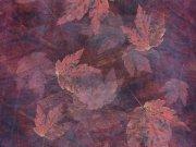 Фотопечать на потолке: Текстуры 7