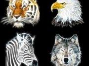 Фотообои на стену: Животные 8