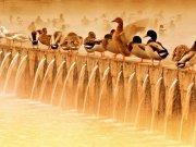 Фотообои на стену: Животные 54